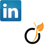 Viadeo ou Linkedin : lequel choisir ?